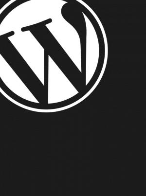 Digi- ja mainostoimistopalvelut - WordPress-suunnittelu
